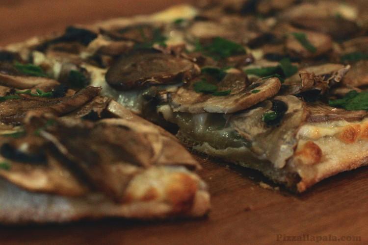 pizza_Funghi